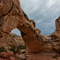 Road Trip: Capitol Reef National Park
